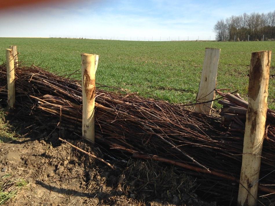 Les fascines contre les coulées de boues
