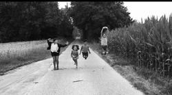 Un chemin de remembrement entre Avennes et Ville-en-Hesbaye (Charlotte Louvet)