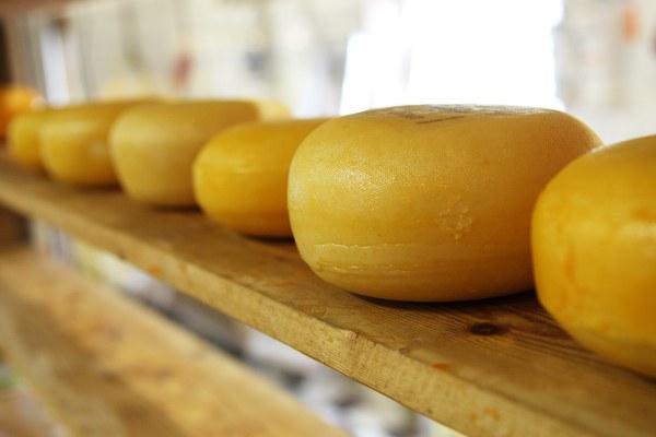 cheese 2785 1920